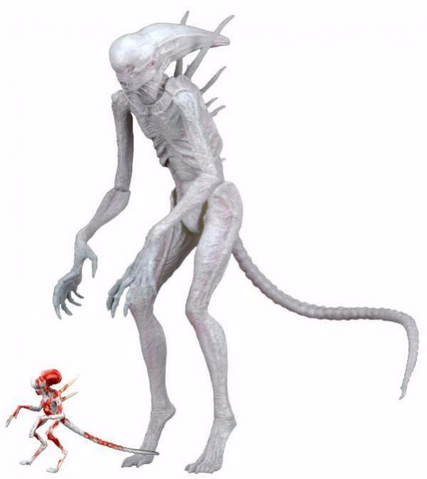ALIEN COVENANT 7 NEOMORPH FIGURE