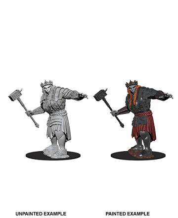Dungeons & Dragons Nolzur's Marvelous Miniatures:  FIRE GIANT