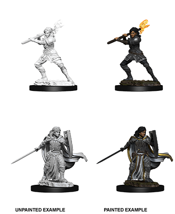 Dungeons & Dragons Nolzur's Marvelous Miniatures: Female Human Paladin