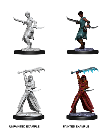 Dungeons & Dragons Nolzur's Marvelous Miniatures: Female Human Rogue