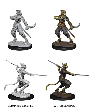Dungeons & Dragons Nolzur's Marvelous Miniatures:  MALE TABAXI ROGUE