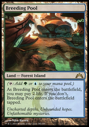 Magic: Gatecrash 240: Breeding Pool