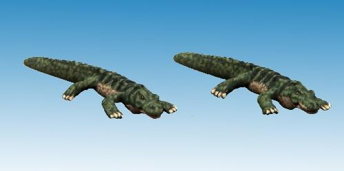 North Star Africa: Dwarf Crocodile (1)