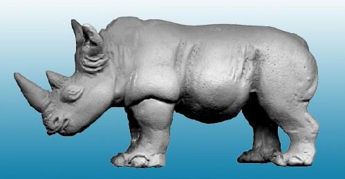 North Star Africa: Rhino (1)