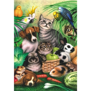 Perre Group Puzzles: Magic Pets [Damaged]