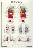 Puzzle (1000 Piece): Reflexology (Damaged)