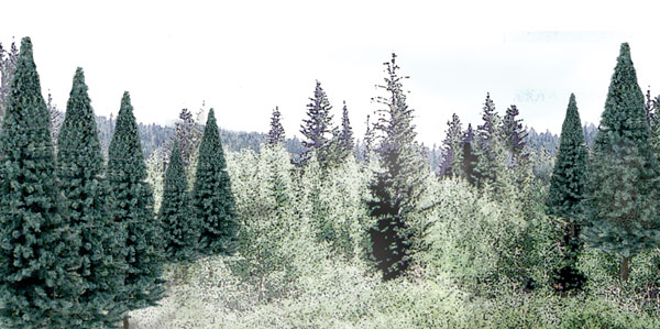 Woodland Scenics: Ready Made Trees: 13 Blue Spruce
