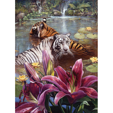 Perre Group Puzzles: Two Tigers